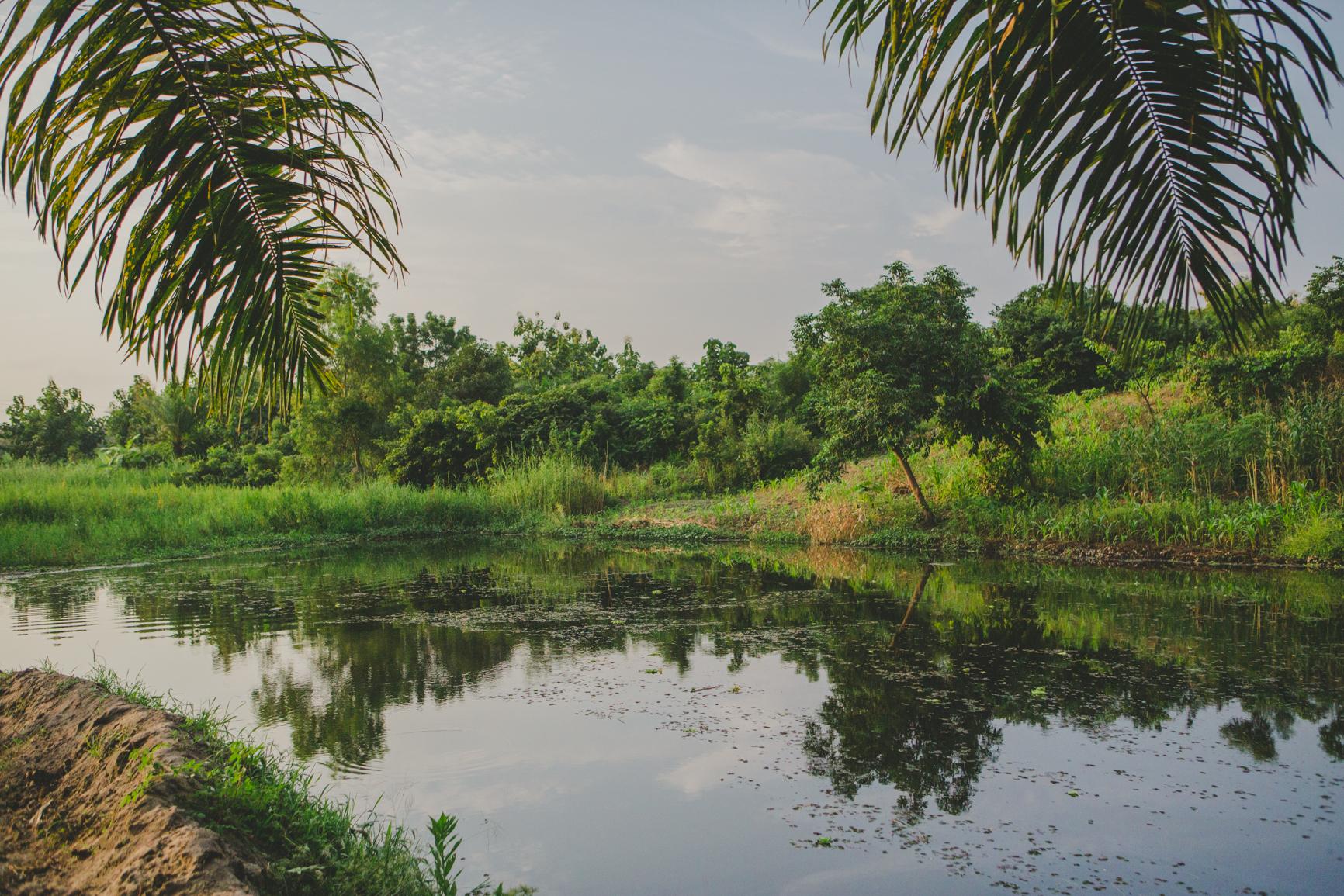Photo du fleuve